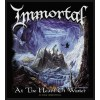 Patch Immortal - At The Heart Of Winter